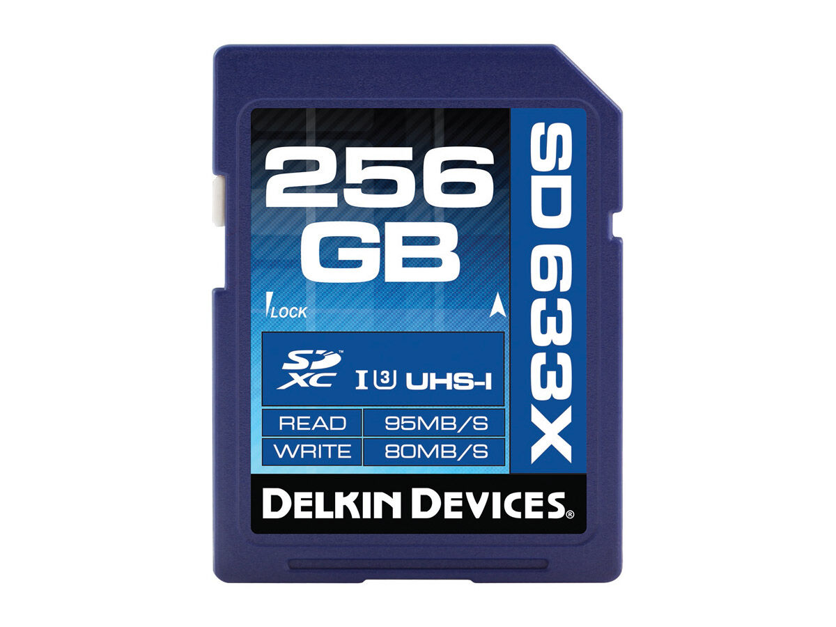 Delkin Devices Minnekort Secure Digital 256GB SDXC 95MB/s